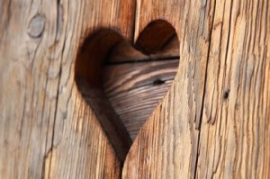 preserving your timber products