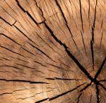 wood-grain